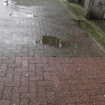 Brick Walkway1