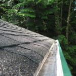 Roof & Gutters 2