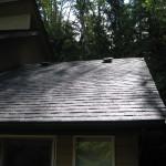 Roof & Gutters 3