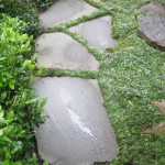 Step Stone Walkway
